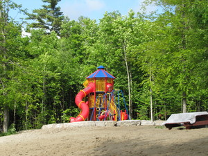 <b>Accessible Play Structure</b>